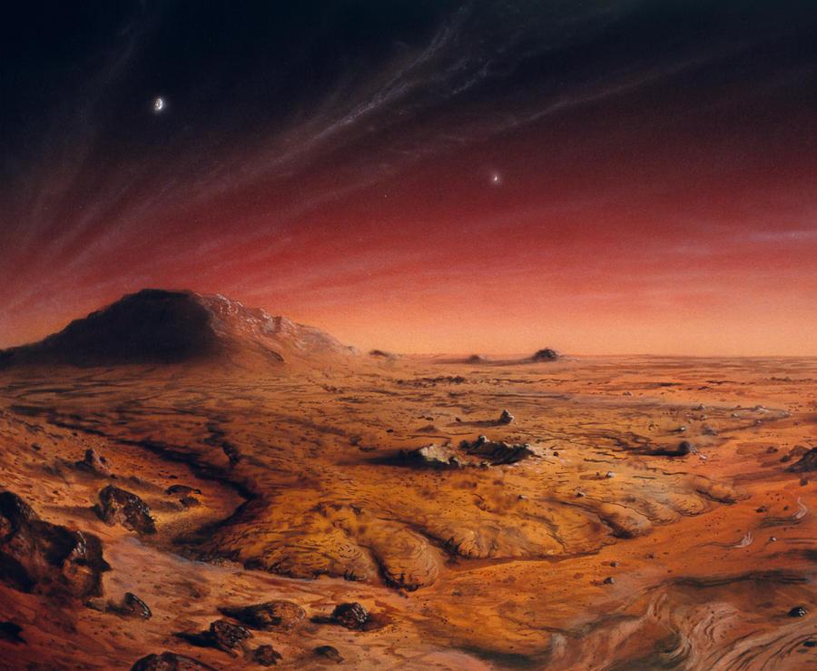 наверное фотографии неба с поверхности марса это начальная стадия